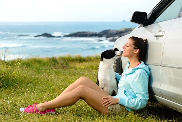 voyager avec son animal de compagnie